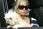 Jessica Simpson and her pet pooch Maltipoo Daisy in happier times