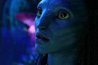 Over 36,000 people had seen Avatar at the IMAX 3D theatre in Auckland (Reuters)