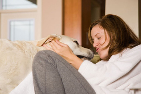 A recent Purina survey shows Kiwi pet owners highly value the role their furry friends play in the home