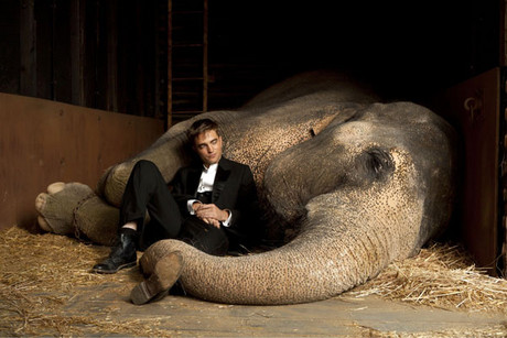 Robert Pattinson and Thai in Water for Elephants