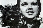 Actress Judy Garland and Terry, who played Toto in the film