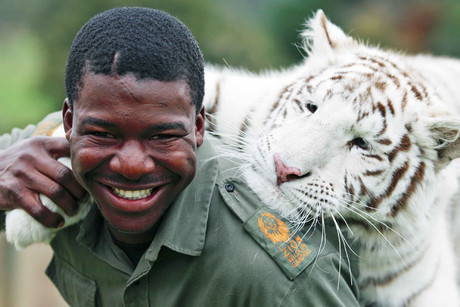 Clifford Dalu Mncube died more than three years ago, just moments after he patted the tiger and asked how it was