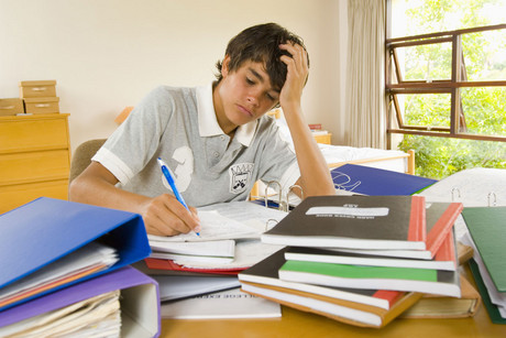 Homework is not necessary a help for learning (file)