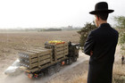 An ultra-Orthodox Jewish man watches as a truck transports Iron Dome anti-missiles batteries in Ashdod (Reuters)