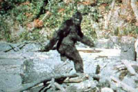 'Bigfoot' as seen in a 1967 film shot in California