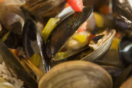 The health warning applies to all bi-valve shellfish, including mussels