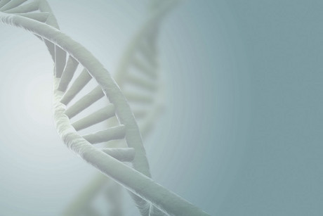 According to some estimates, 20 percent of the human genome is now covered by patents