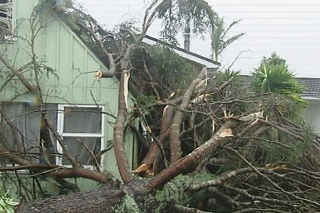 Damage was widespread in Whenuapai