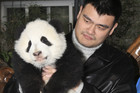 Former NBA player Yao Ming lifts up a giant panda cub at Chengdu Research Base of Giant Panda Breeding (Reuters)
