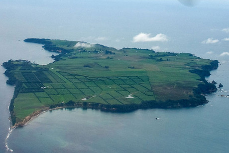 Three Maori groups are making claims on Motiti Island, in the Bay of Plenty