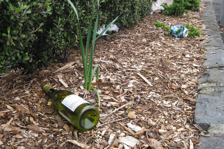 Discarded wine bottle in the central suburb of Kingsland