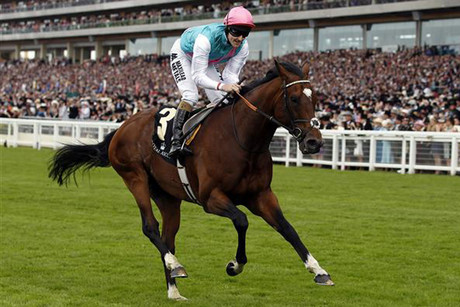 Frankel romps away (Reuters)