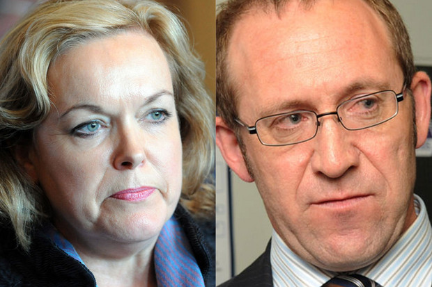 National MP Judith Collins and Labour MP Andrew Little (NZN/file)