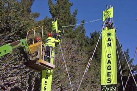 With a cherry-picker in place and bolt cutters in hand, police removed the protesters