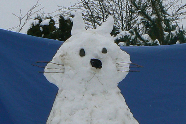"Lydia Falwasser and Vanessa MacKechnie created this ""BIG Kitty"" in Ashburton"