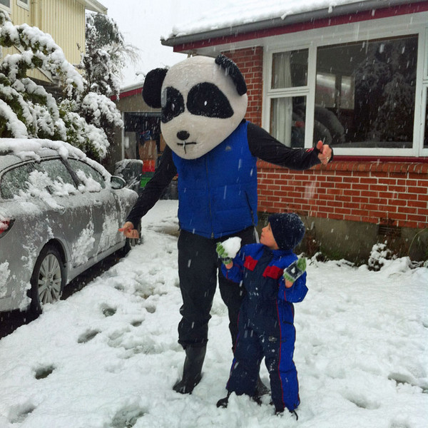 A panda out in the Christchurch snowfall (Photo: Craig Denny)