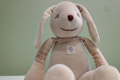 'Nummy', the stuffed bunny (photo: Life with Roozle)