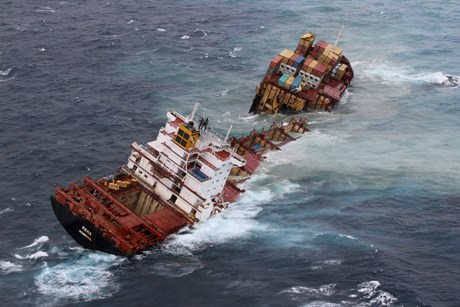 The Rena hit the Astrolabe Reef off Tauranga last October causing an environmental disaster