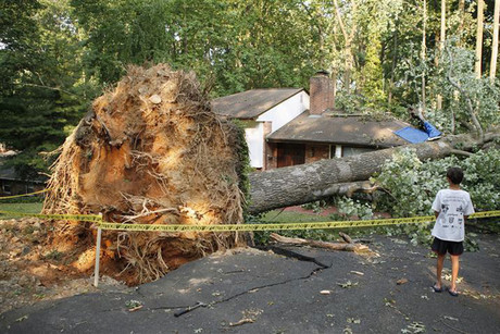 A child looks at a house struck by a tree after a violent thunderstorm ripped through the area on Saturday evening, in Falls Church, Virginia, USA (Reuters)