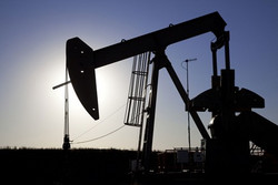 The Environmental Defence Society accuses TAG Oil ...