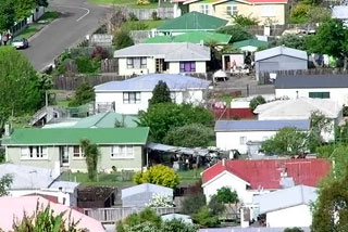 Only five companies in New Zealand build more than 100 houses a year, while 4600 companies build one house a year (file pic)