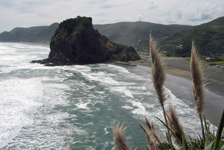 Iraena Asher disappeared near Piha in 2004