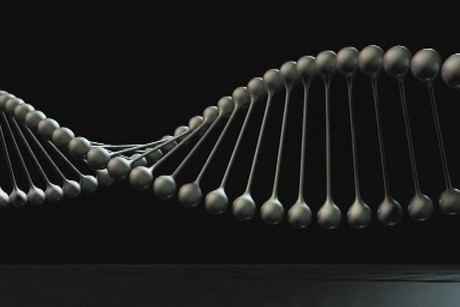 A genome sequence is about 3.2 billion base pairs long