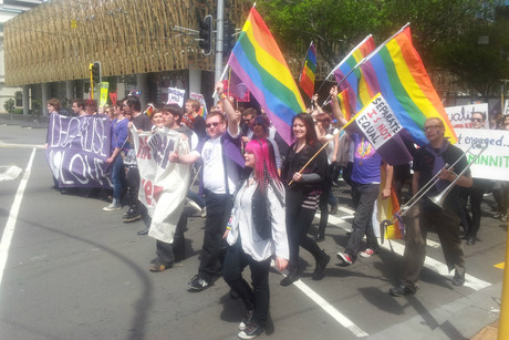 Gay marriage protestors in Wellington last year (Lloyd Burr)