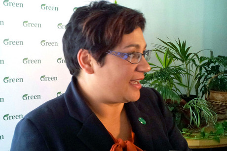 Green Party co-leader Metiria Turei