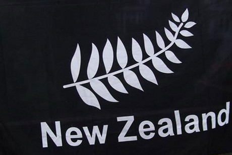 The silver fern is taking pride of place in London (file pic)
