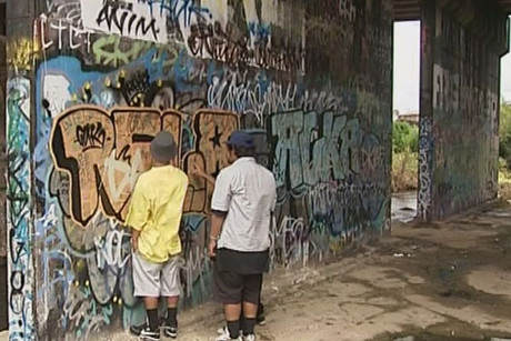 In the last year, 340,000 sites were vandalised around Auckland