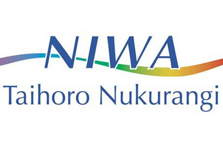 Niwa is looking at cutting jobs