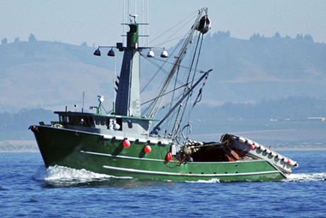 A New Zealand fishing company has been found guilty in a US court (file)