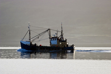 A new plan aims to cut injuries in the fishing industry (file)