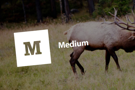 Medium borrows aspects of several existing blogging platforms