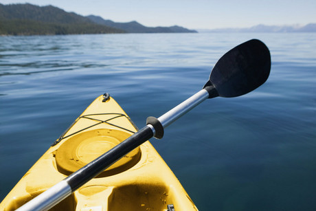 The woman was seen coming out of the kayak around 200m from the shore in Waikanae (file pic)