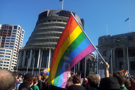 Hundreds of same-sex marriage supporters have gathered at Parliament (Photo: Lloyd Burr / 3 News)