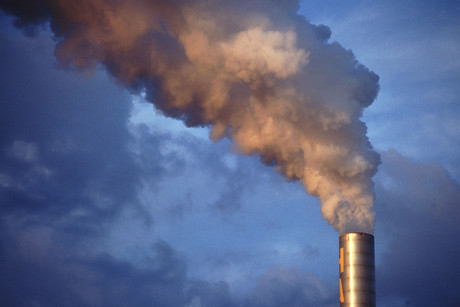 Carbon emitters are required to account for one in every two tonnes of carbon emitted (file)