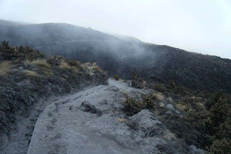 Road coated in ash after Monday night's eruption (AAP)