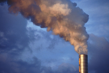 NZ has pledged to lower greenhouse gas emissions by 50 percent from 1990 levels by 2050