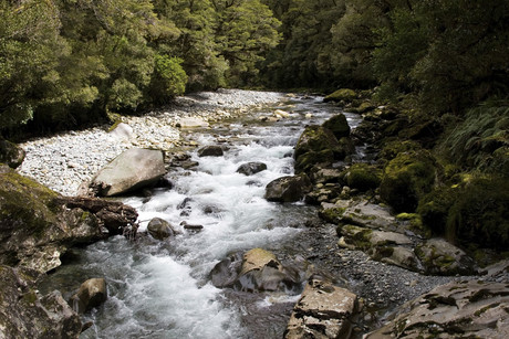 The Maori king says Maori have always owned New Zealand's water (file)