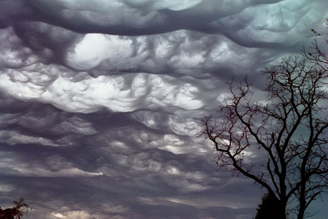 Undulatus asperatus clouds (Photo: Wikipedia)