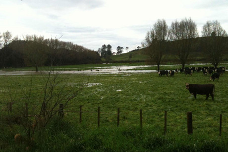 Flooding in Northland (Photo: Jane Luscombe/3 News)