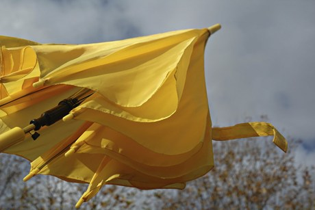 High winds could top 100 km/hr in Wellington today  (file)