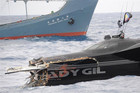 The Ady Gil after its collision with Japanese whaling ship Shonan Maru 2 (Reuters / Sea Shepherd file)