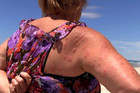 Summer has brought with it more than a suntan for the western Bay of Plenty beachgoers