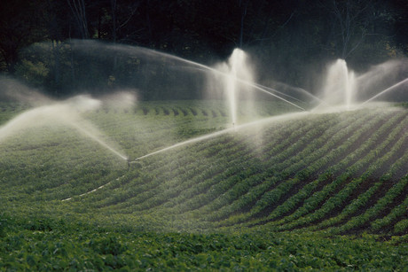 The Green Party says a new irrigation project will be bad for the environment (file)
