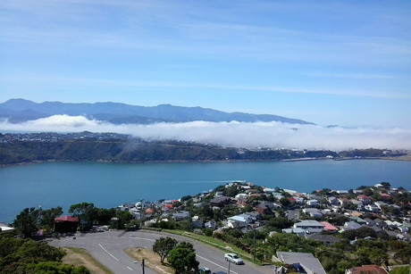 The view from Mt Victoria looking toward Wellington Airport (Photo: Michael Gamble/ 3 News)