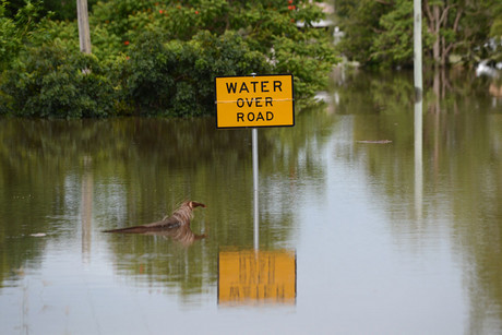 Bundaberg, in Queensland, has been hit the hardest by floods (AAP)