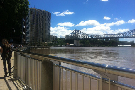 The swollen Brisbane River (Photo: Rachel Morton / 3 News)